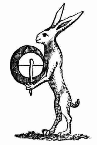 Hare, beating the tabor