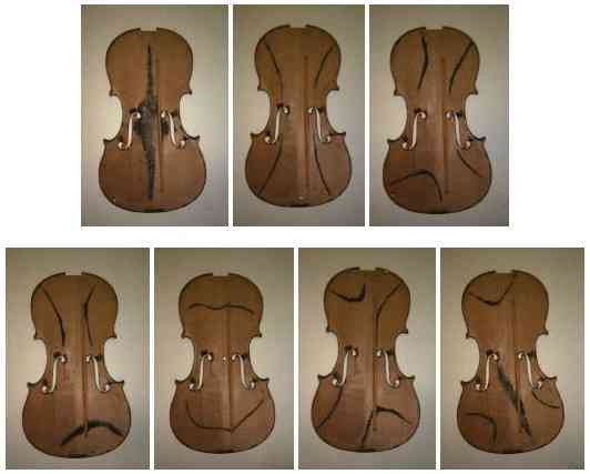 Violin Plate vibration modes, University of New South Wales