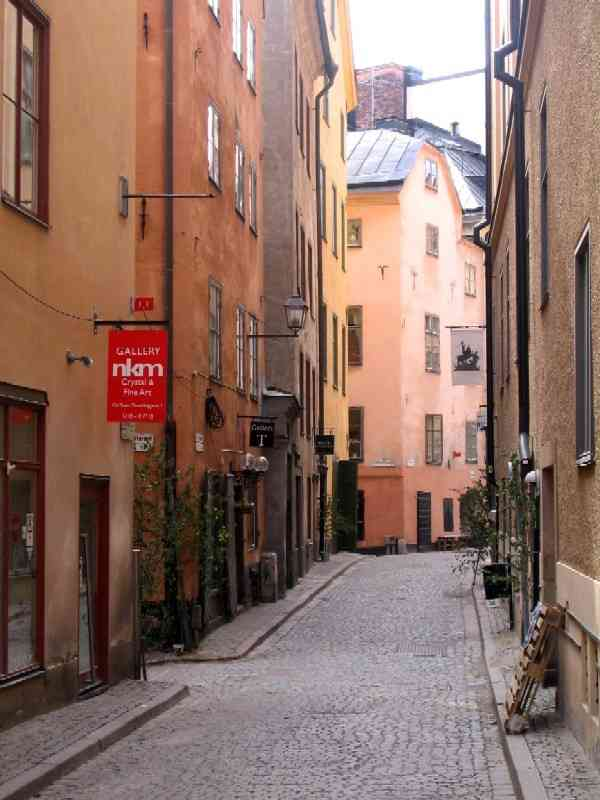 Gamla Stan street with Mid-sommar festive birch switches propped against shops' doorways