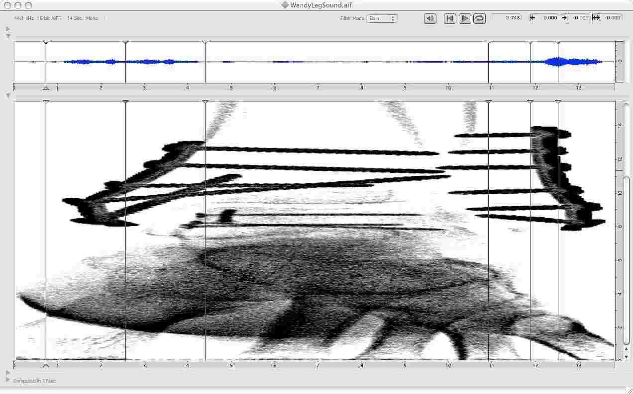 Ken Ueno's digital spectrogram of digitized x-ray of Wendy Richman's ankle, ca. 2006, the basis for Ueno's composition 'Talus'